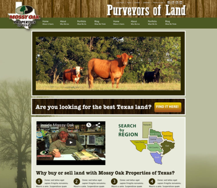 MOP of Texas Website