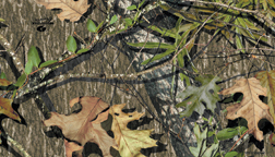 Mossy Oak Camo: Obsession