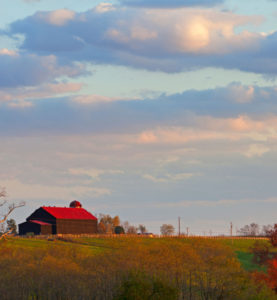 BG-RED-ROOF-BARN-IN-EVENING-web