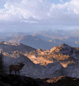SILHOUETTE-ELK-MOUNTAINS-web