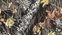 Mossy Oak Camo – Break Up