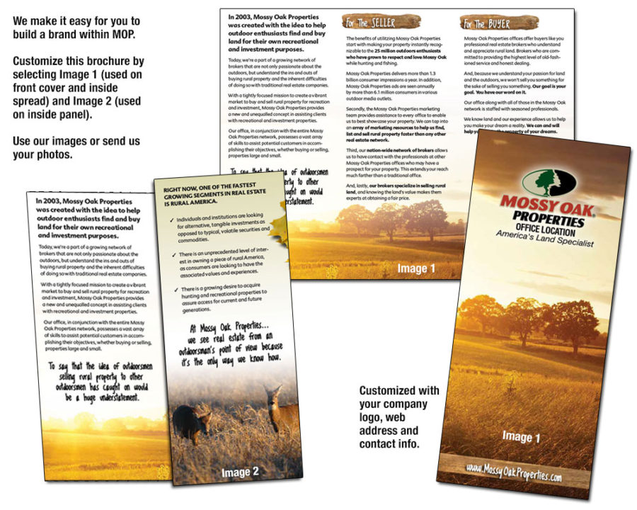 MOP Trifold Brochure – Customize It!
